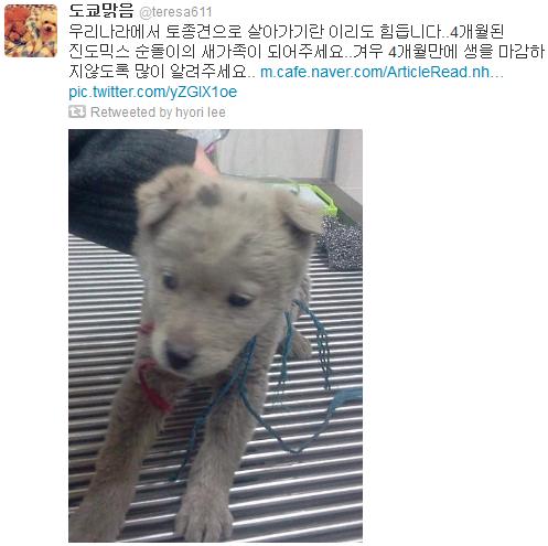 [Twitter][2013] Cô Tiên và góc vắng lặng gió {23/12 - 30/12 UPDATE} 328_zps82909070