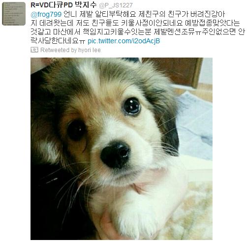 [Twitter][2013] Cô Tiên và góc vắng lặng gió {23/12 - 30/12 UPDATE} 329_zps23b7e5f1