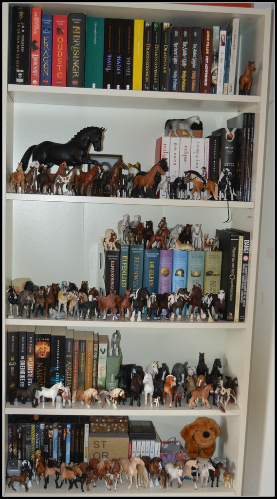 Question about displaying Horses :) EDIT - Display found!! :D DSC_0010_zpsypfx6so4