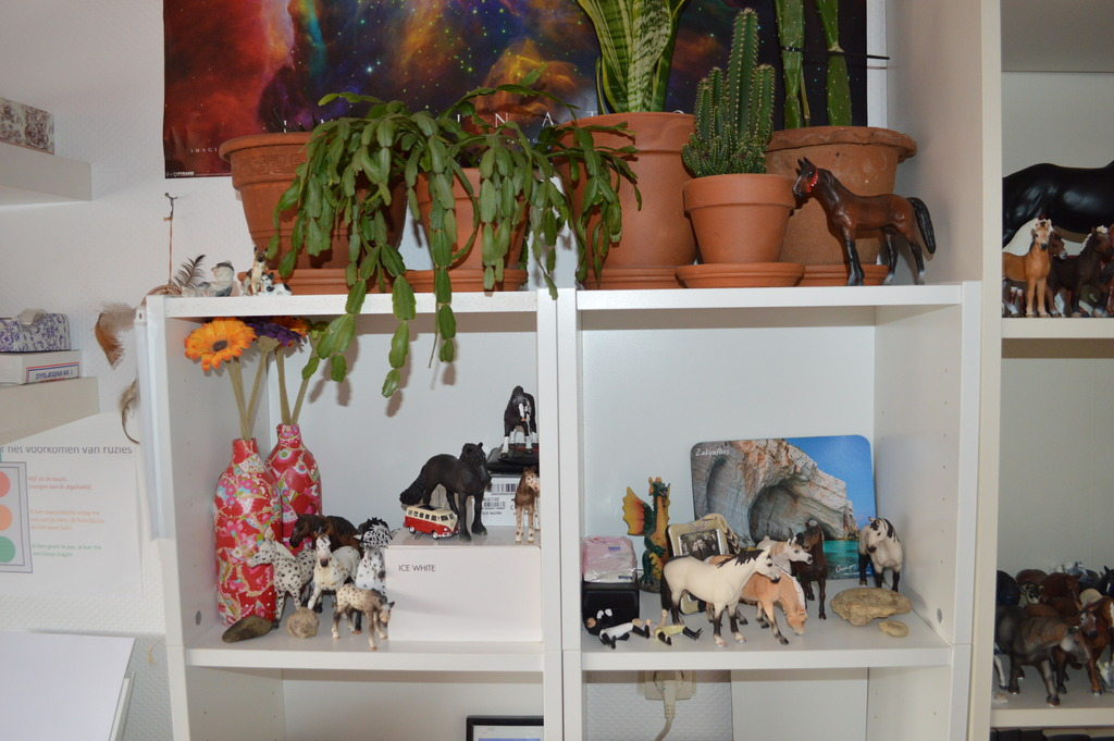 Question about displaying Horses :) EDIT - Display found!! :D DSC_0011_zps1fld0uyd