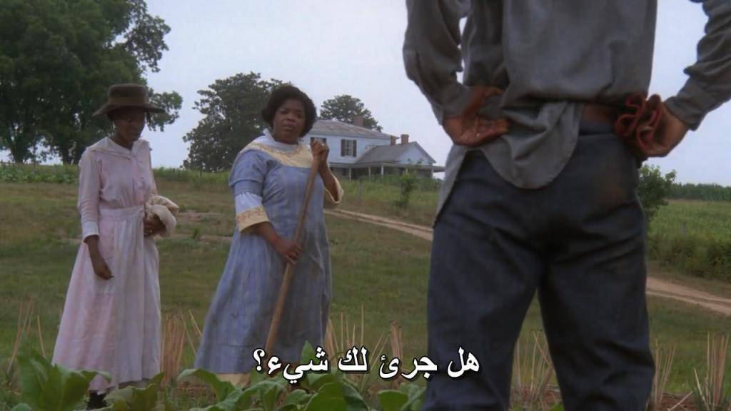 The Color Purple (1985) One of the greatest film ever Color.Purple.06
