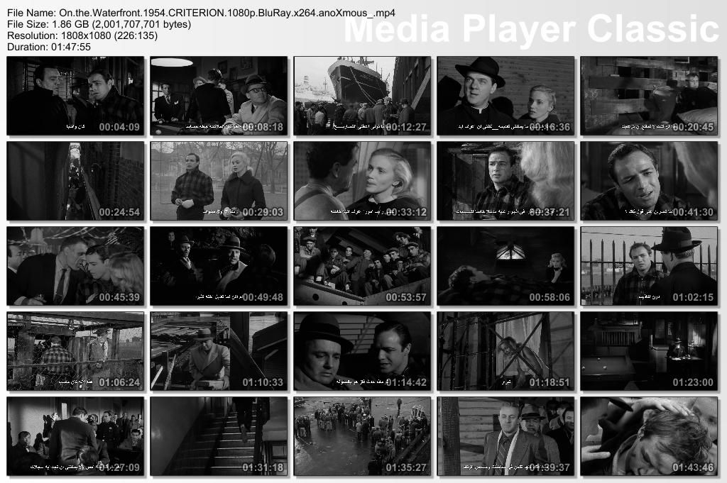 On The Waterfront (1954) Criterion release Thumbs-Waterfront