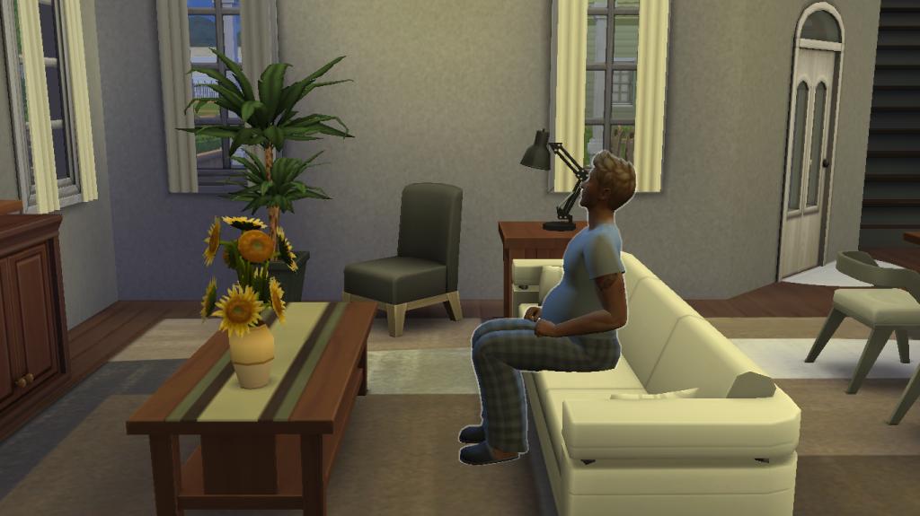 My Sims 4 Experience 01-14-15_10-24nbspPM_zps0dd50461