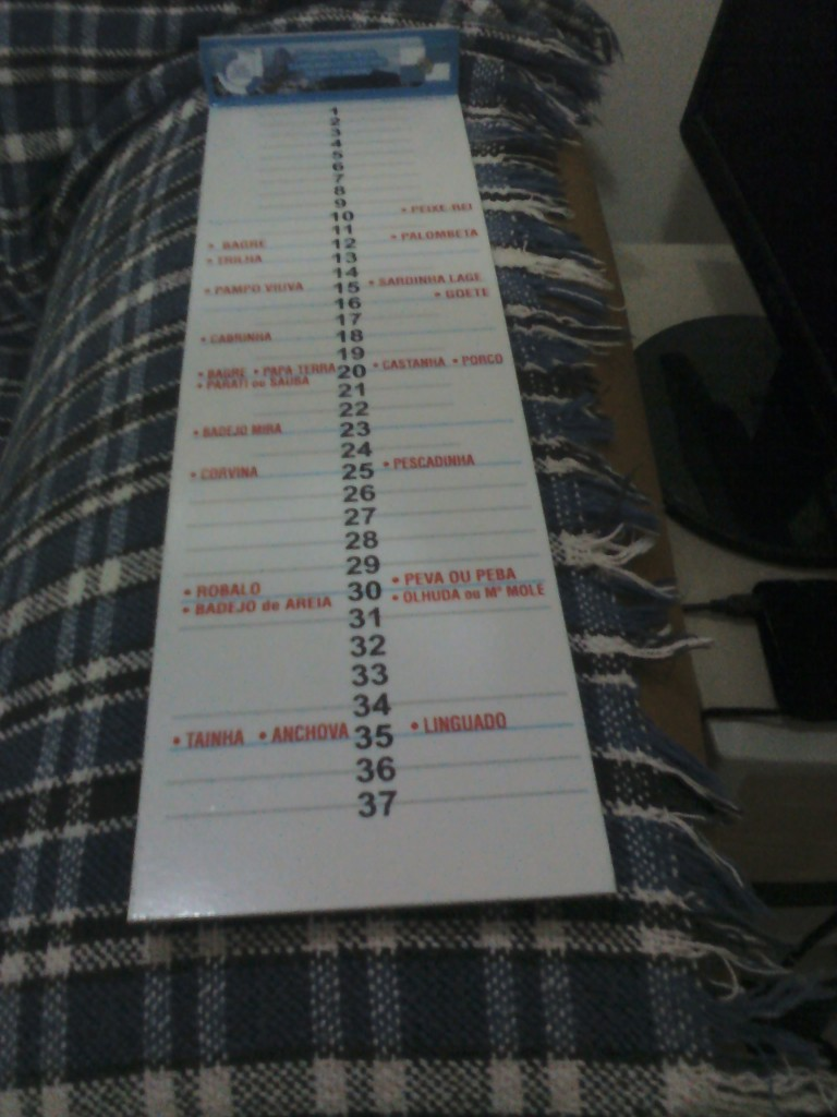Régua com medidas mínimas IMG139