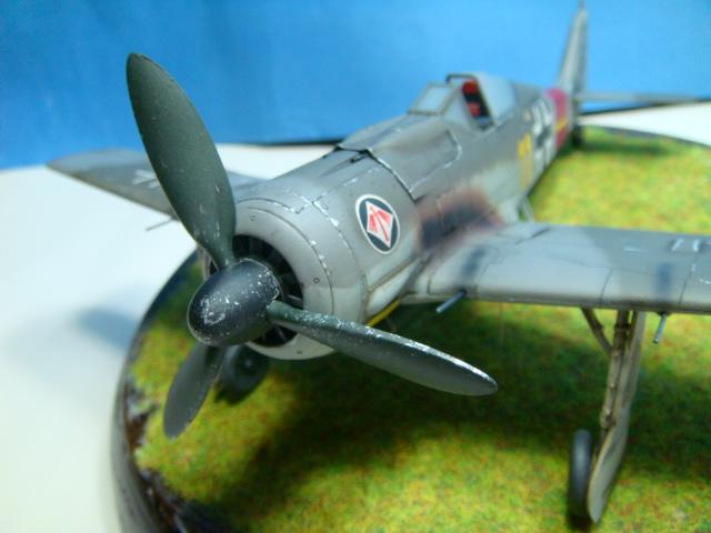 Focke-Wulf Fw 190A-8  .eduard Weekend Edition a 1/48.. ( TERMINADO  ) DSC08123