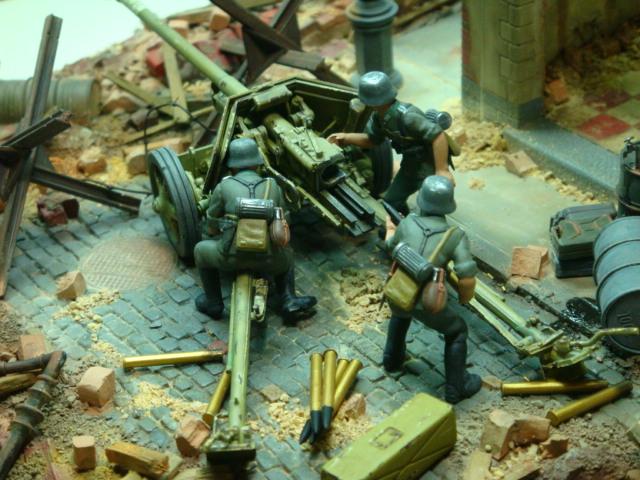 Stalingrado. Finales  de  Septiembre 1942.. DSC08998_zps8511969b