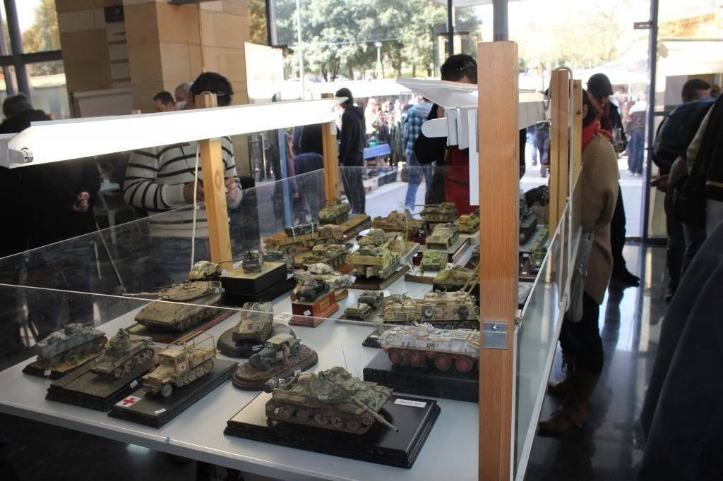 Feria, Exposición y Concurso  AMT - 2013 (Torrente ,Valencia ) IMG_1121_zpsd7870240