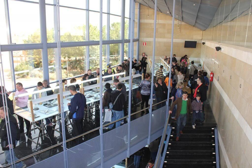 Feria, Exposición y Concurso  AMT - 2013 (Torrente ,Valencia ) IMG_1181_zps17442771
