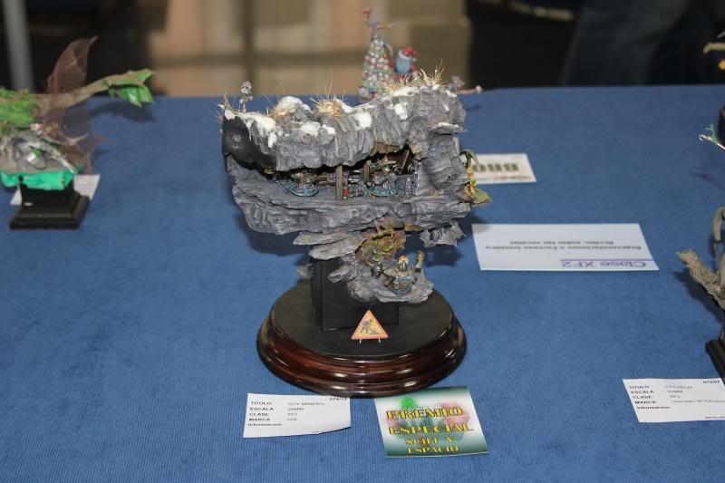 I Concurso Ciudad de Elche-2013 AIME IMG_1267_zpsd22a6477