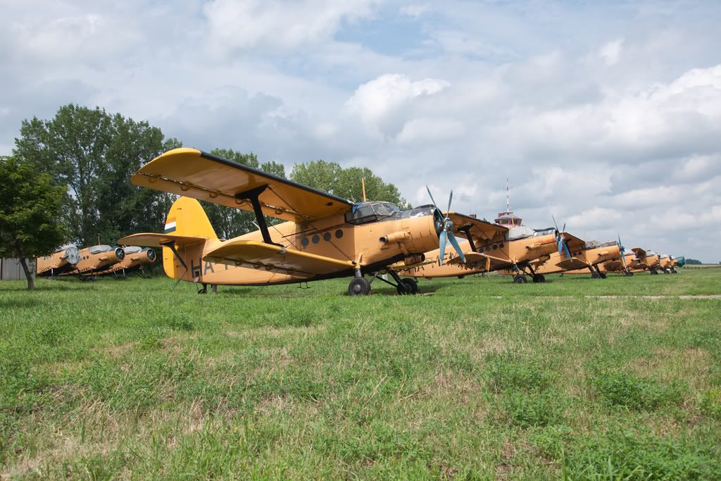Antonov An-2 - Pagina 22 20120726_26941