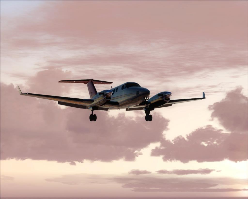 Dusk flight 10-4