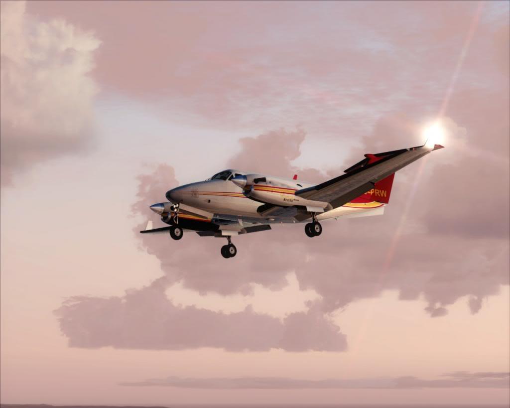 Dusk flight 11-4