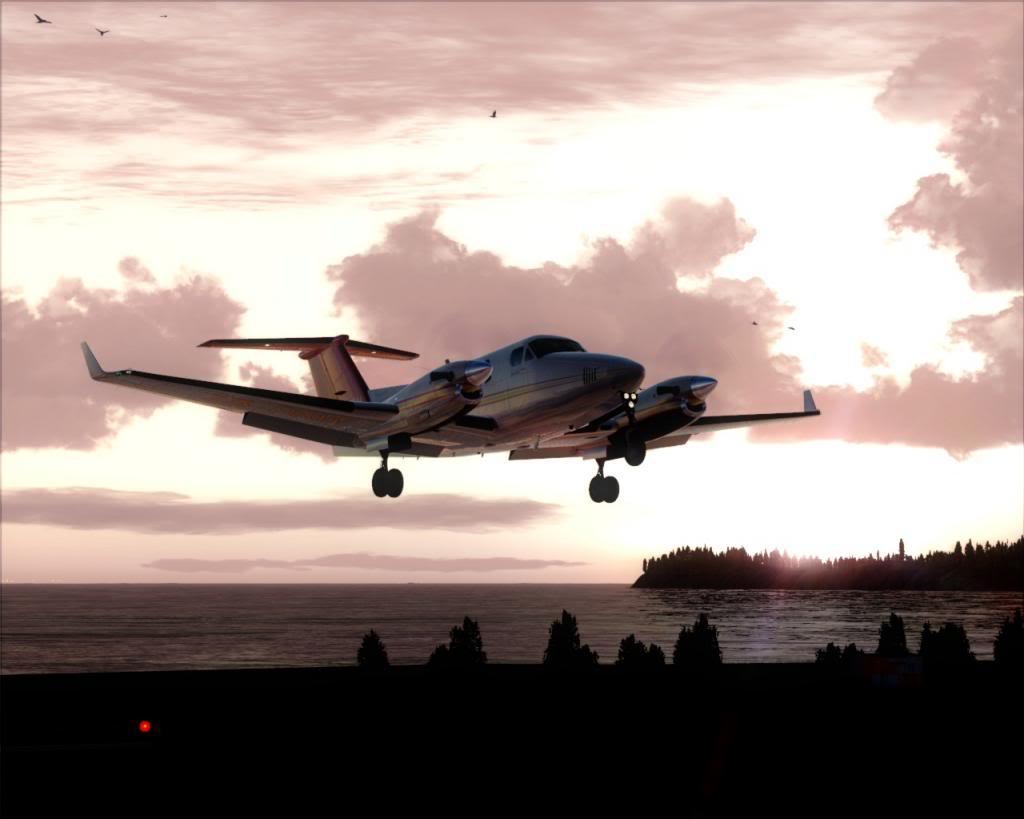 Dusk flight 15-4