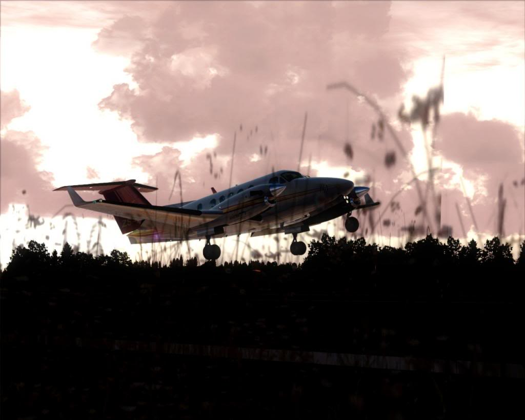 Dusk flight 16-4