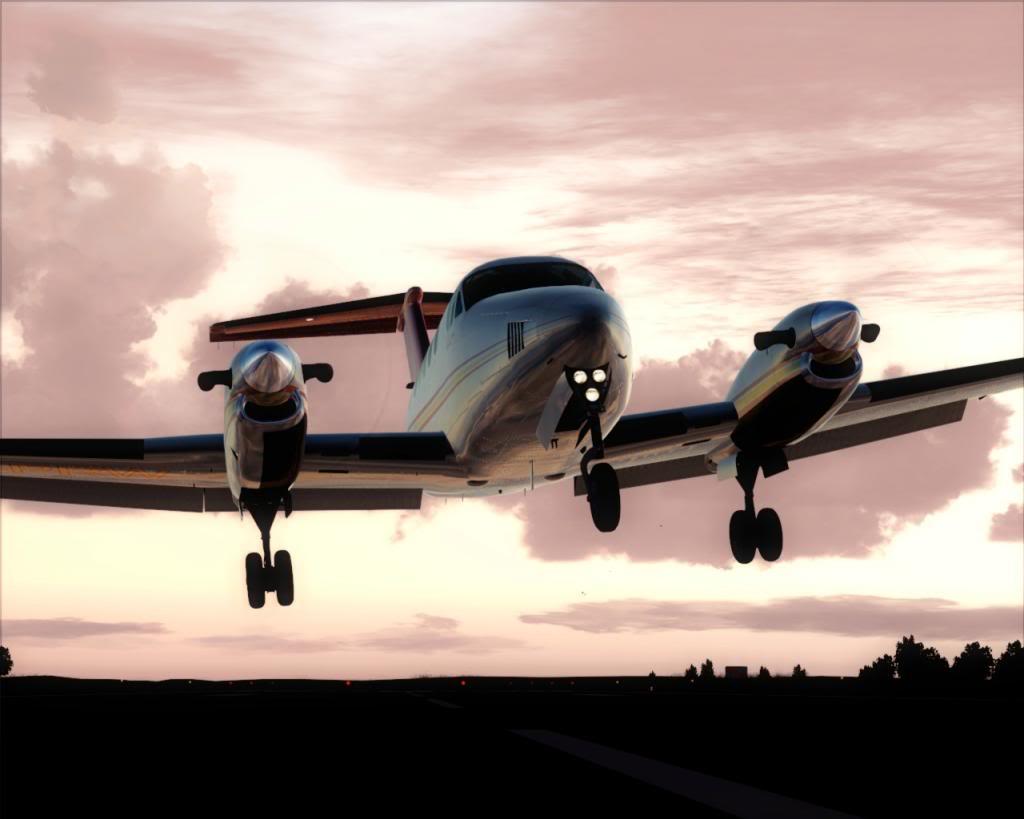 Dusk flight 17-4