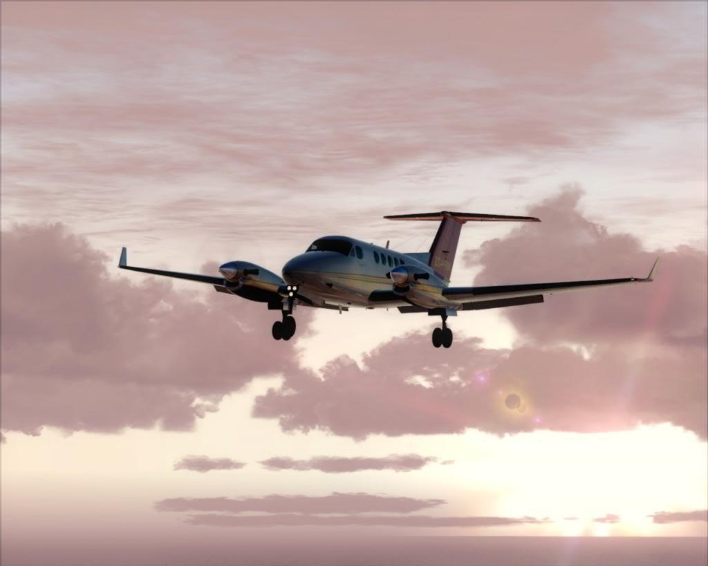 Dusk flight 5-4