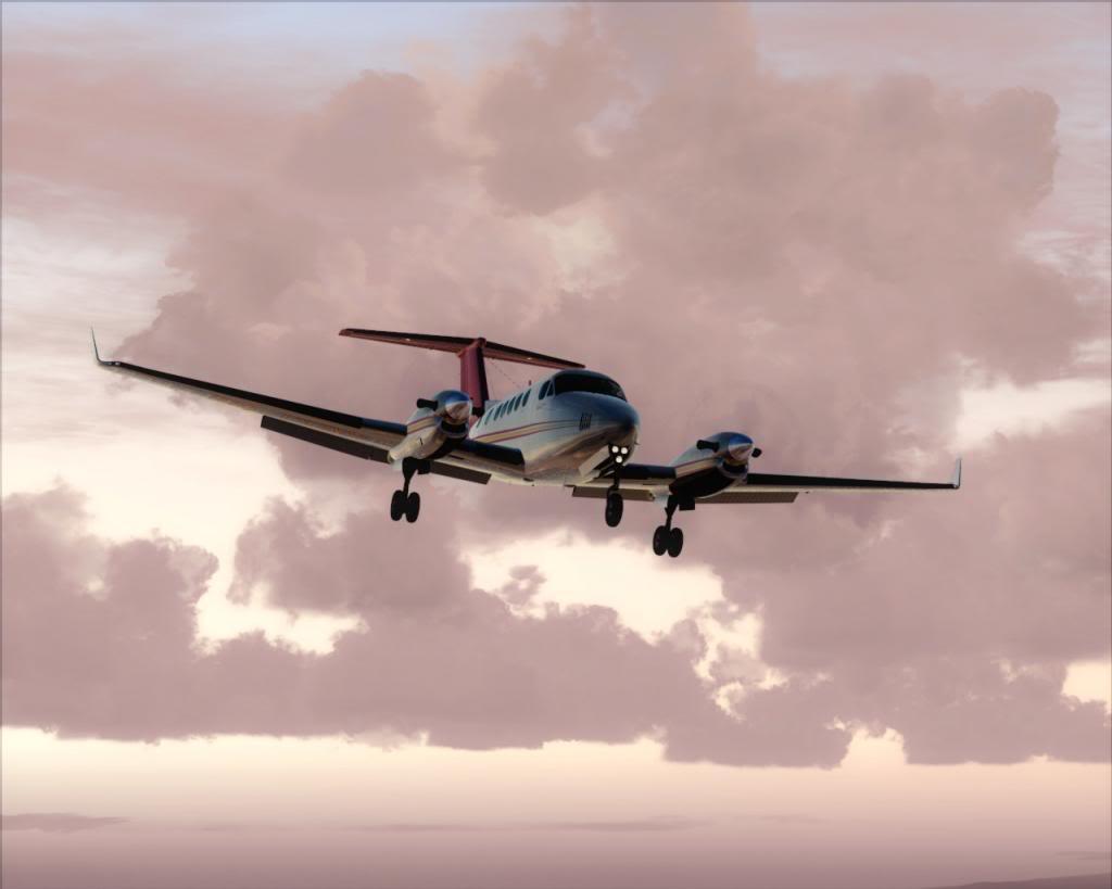 Dusk flight 6-4