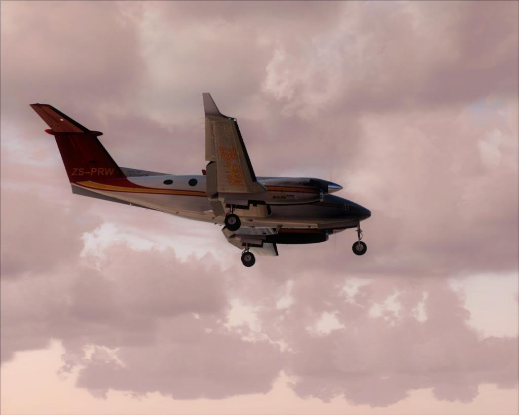 Dusk flight 7-4