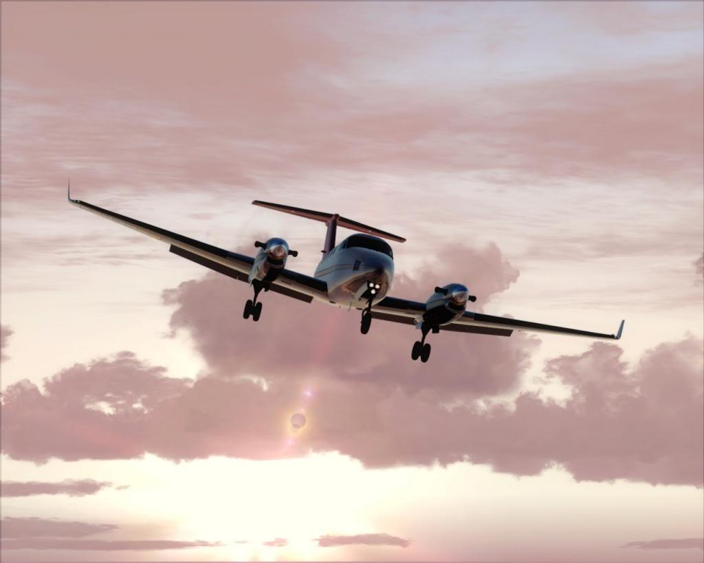Dusk flight 9-4