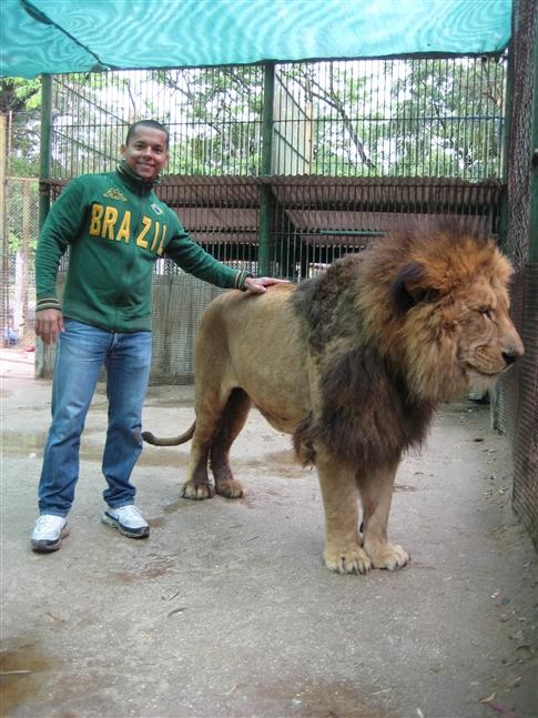 Comparação de  tamanho entre  animais  e   Seres humanos 485x647x14jpgpagespeedicpAn6_E1xlt