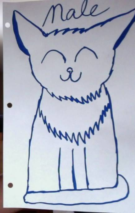 More cat Art requests? WHAT?! Photoon3-26-12at1018AM2-1