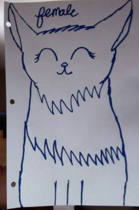 More cat Art requests? WHAT?! Photoon3-26-12at1018AM3-1