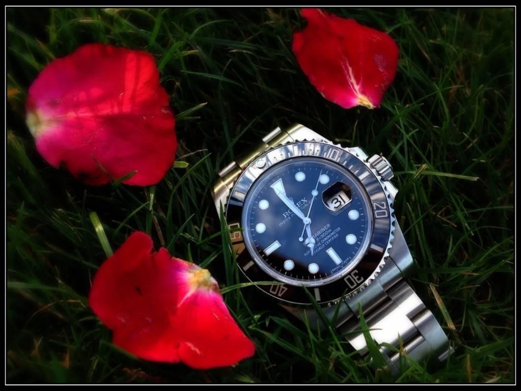 La montre du vendredi 1 novembre  2013 12B7DF11-EED9-4C06-B95C-3CE3A3FE2553-3526-00000215043A93A3_zpsdeb09628