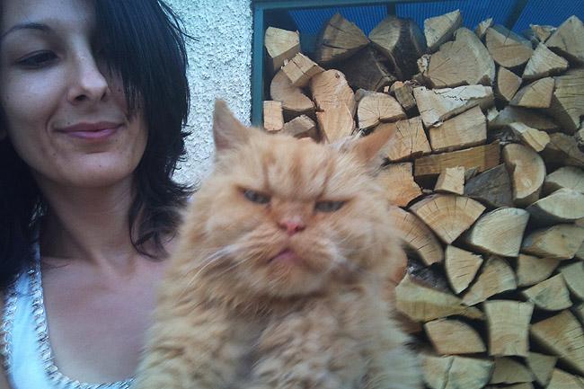 Ο πορτοκαλής Περσούλης των Σερρών, ψάχνει καινούργιο σπίτι....ΥΙΟΘΕΤΗΘΗΚΕ 2012-09-02193305