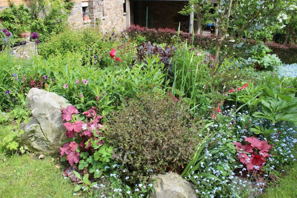 Le jardin de Laurent - Page 5 922764_10200593082402327_924709146_n
