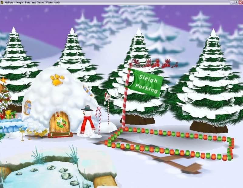 My Winterland :) Winterland12