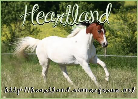 Recherche Aide Heartlandbann