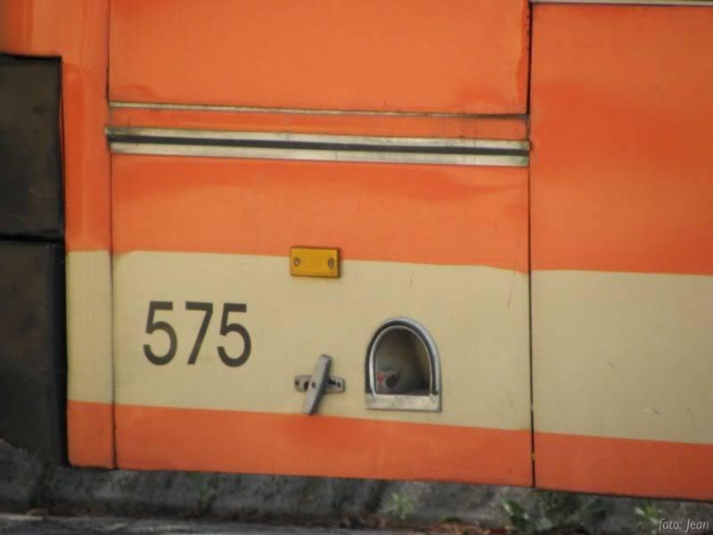 Izlet u Slavoniju P6070073