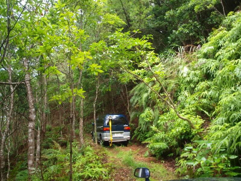 26 September- Route 2 area/Spider alley (AKA, Delica flipper) Wheelin119