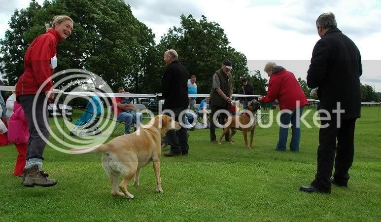 Conisbrough Gala Pictures BARC090718031