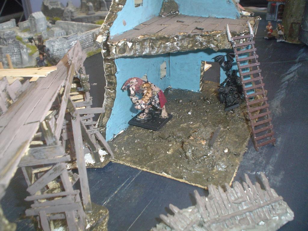 Unwanted forays into Mordheim! DSC01890_zps1570xwfn