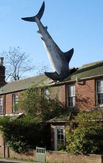 algunos de los monumentos más curiosos del mundo  A238_shark_zps73c37d5c