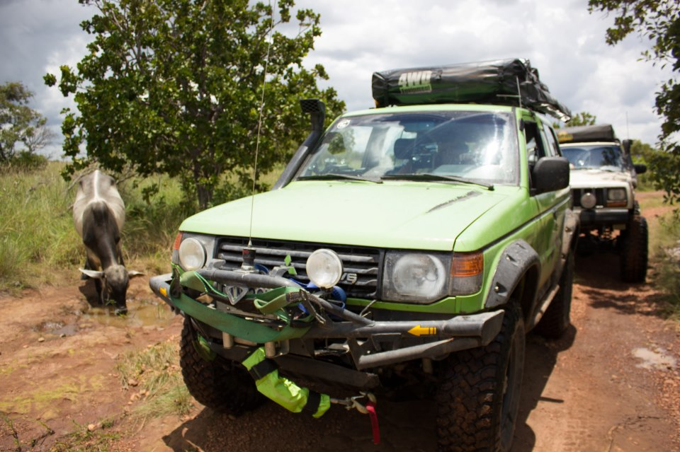 Reseña / Parque Nacional Aguaro Guariquito 1 de Septiembre 318300_512309522128042_992450762_n