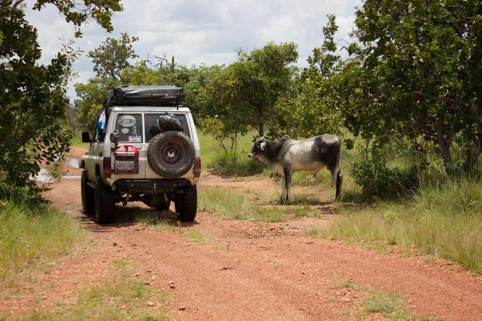 Reseña / Parque Nacional Aguaro Guariquito 1 de Septiembre 375814_512309365461391_230778612_n