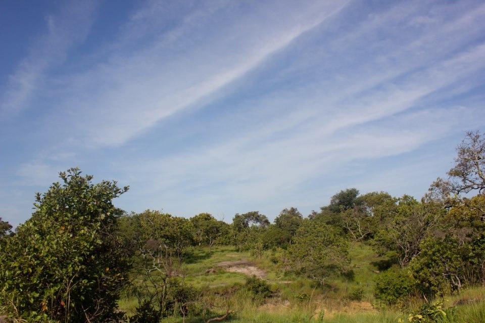 Reseña / Parque Nacional Aguaro Guariquito 1 de Septiembre 396068_512300978795563_808214043_n