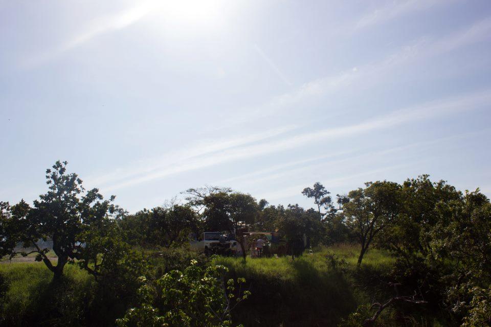 Reseña / Parque Nacional Aguaro Guariquito 1 de Septiembre 576939_512301495462178_799514994_n