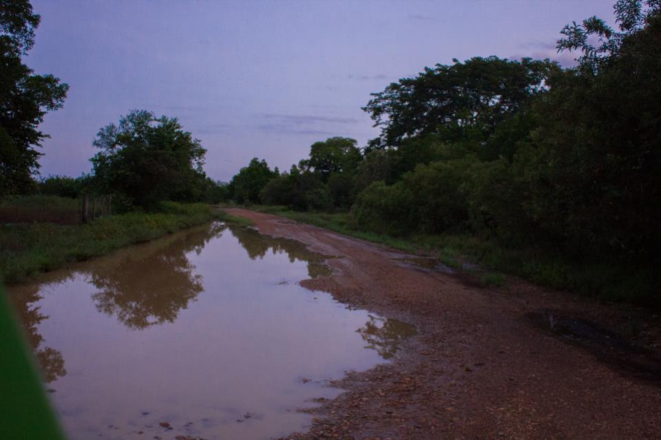 Reseña / Parque Nacional Aguaro Guariquito 1 de Septiembre 579891_512282042130790_1689482678_n