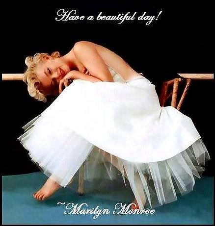 Marilyn Monroe 13608499_gal