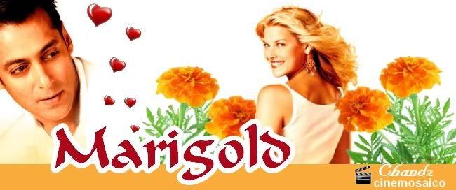 MARIGOLD (2007) Marigold
