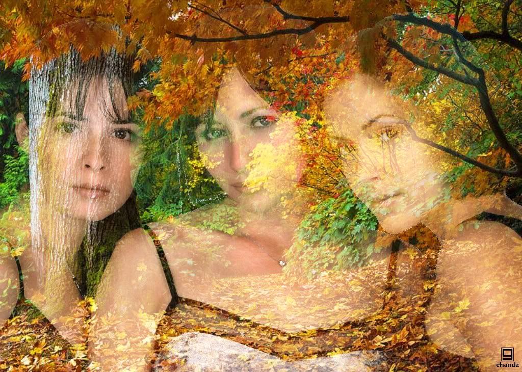 Charmed Autumn-Charmed