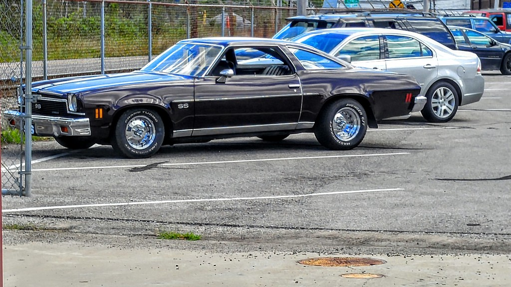 For sale...1973 SS tribute car  Just finished! Chevelle10_zps6azb3syz