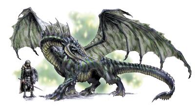 Dragones! Black-dragon