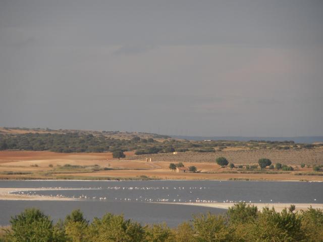 Ruta de los pantanos 21LAGUNAPETROLA