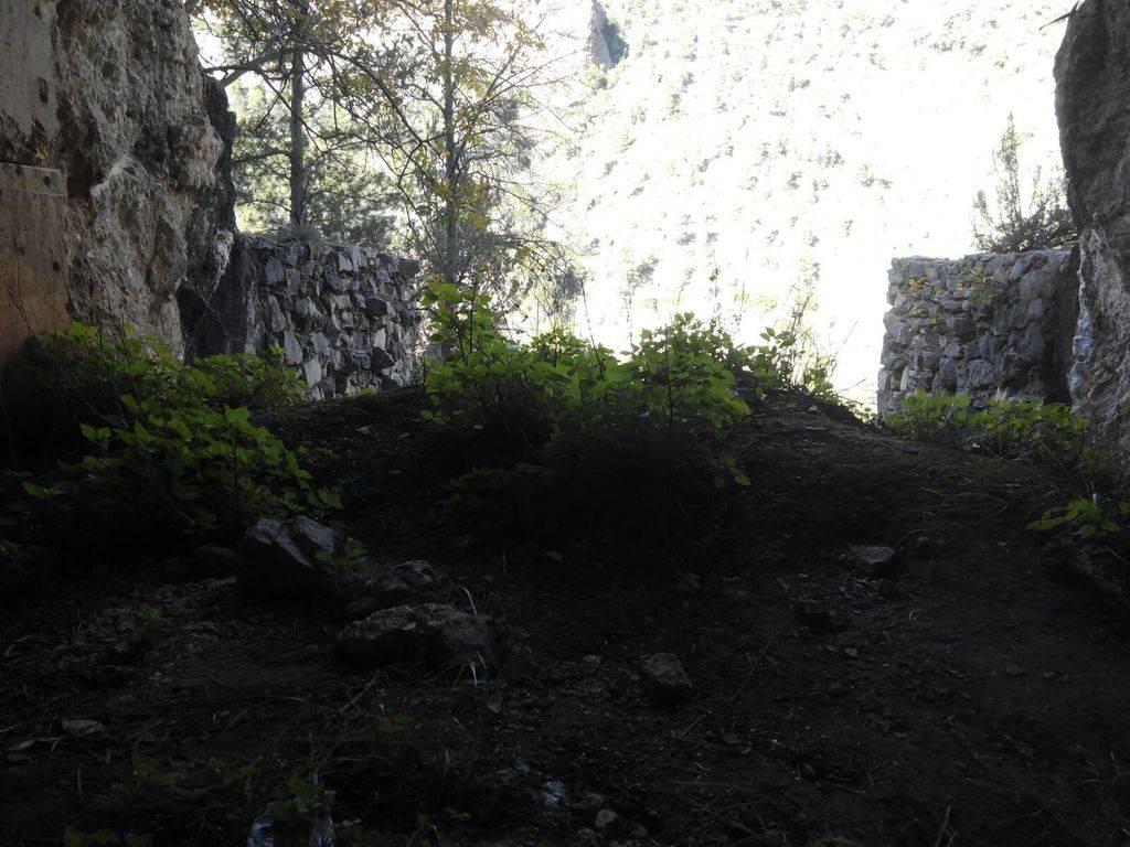 Ruta Trail por los alrededores del  Río Jucar EL 18/10 - Página 4 IMG-20151122-WA0014