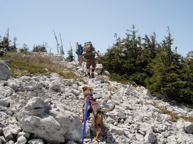 4 planinara,5 pari nogu,9 dana,114 km Velebita 1005538_10203910002301562_8434853478207237578_n_zps6a26026e