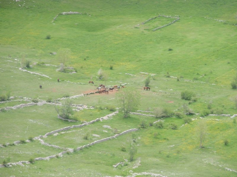 4 planinara,5 pari nogu,9 dana,114 km Velebita 10300955_10203910009141733_920726225722835710_n_zpsf0329ccd